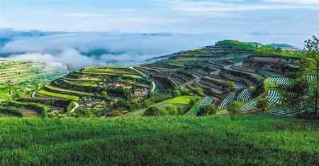科研人员深入农村的路通了 陇原大地更美了