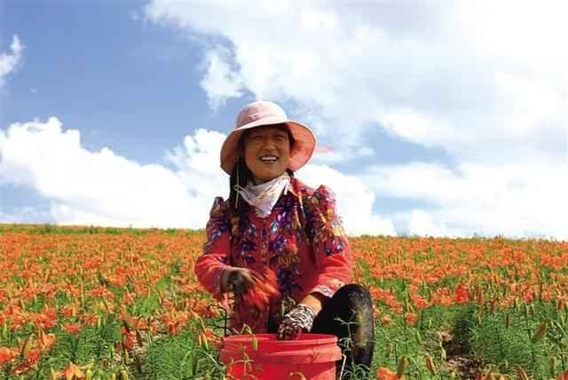 助力乡村振兴 特色农产品唱起主角